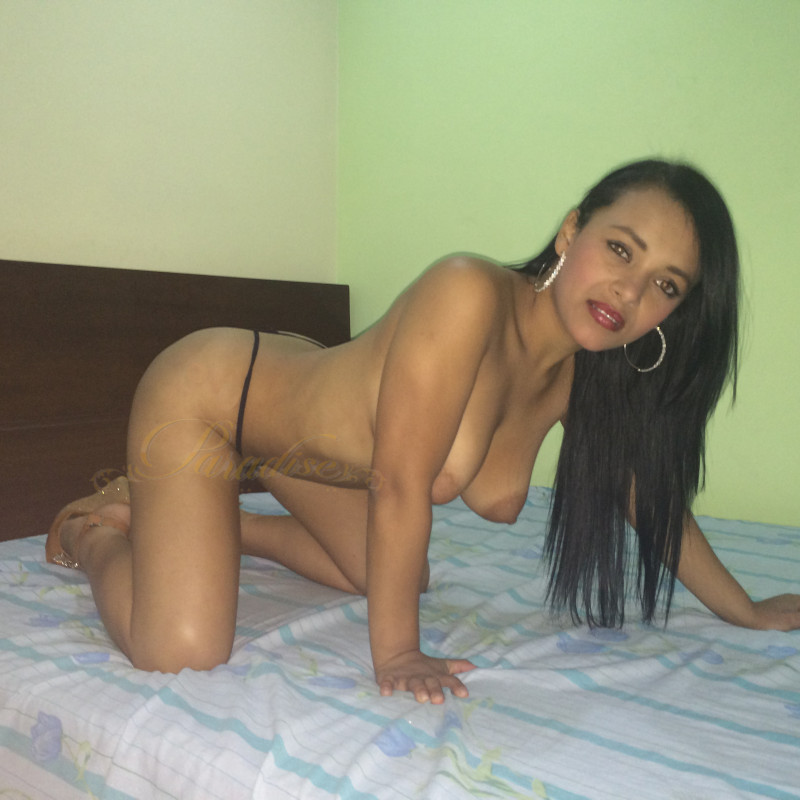 Escort independiente colombia chica chupando polla